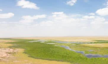 Amboseli Nationalpark Observation Hill
