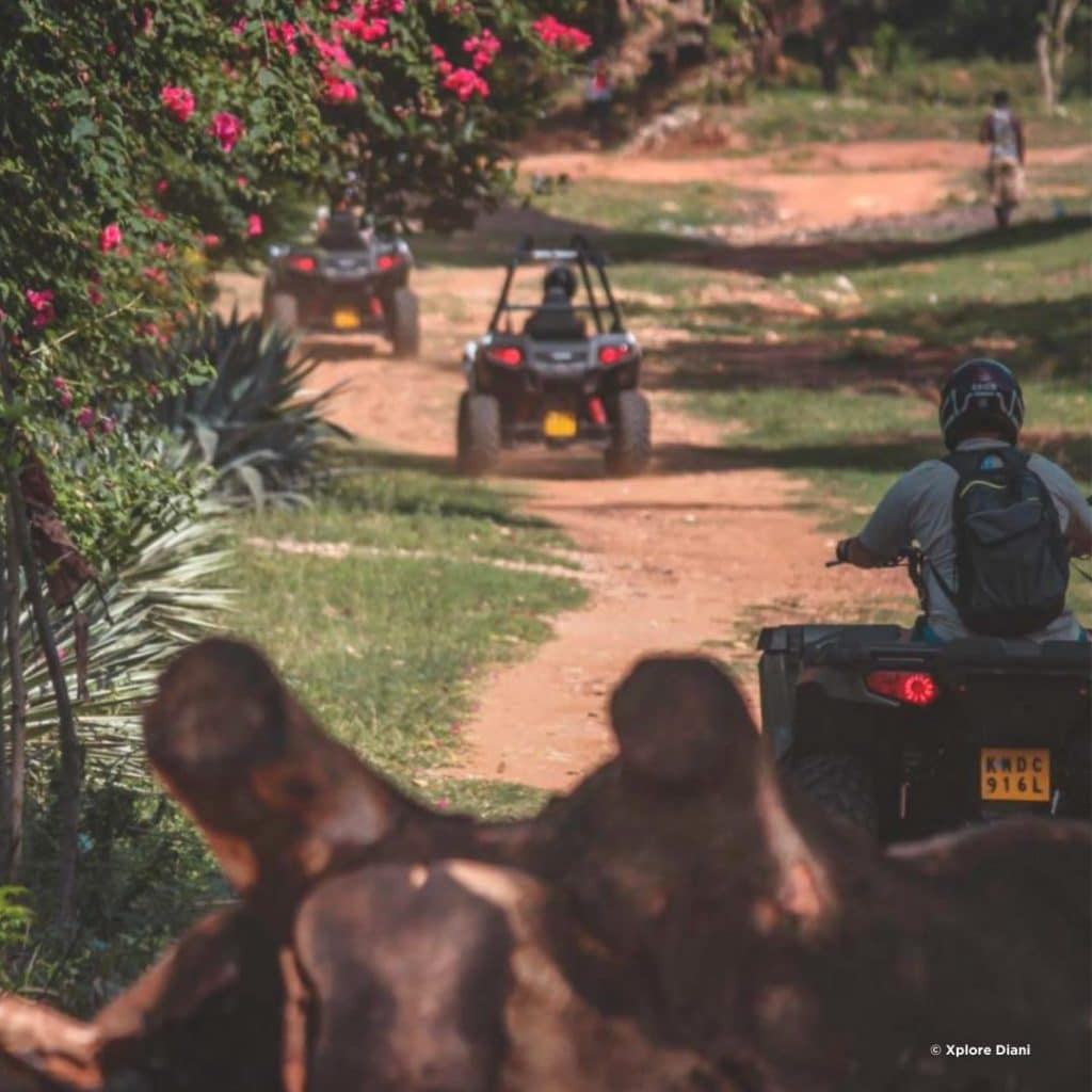 Quad Tour Diani Beach
