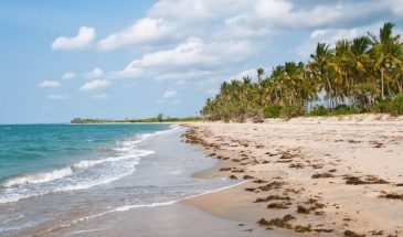 Tansania Küste Pangani