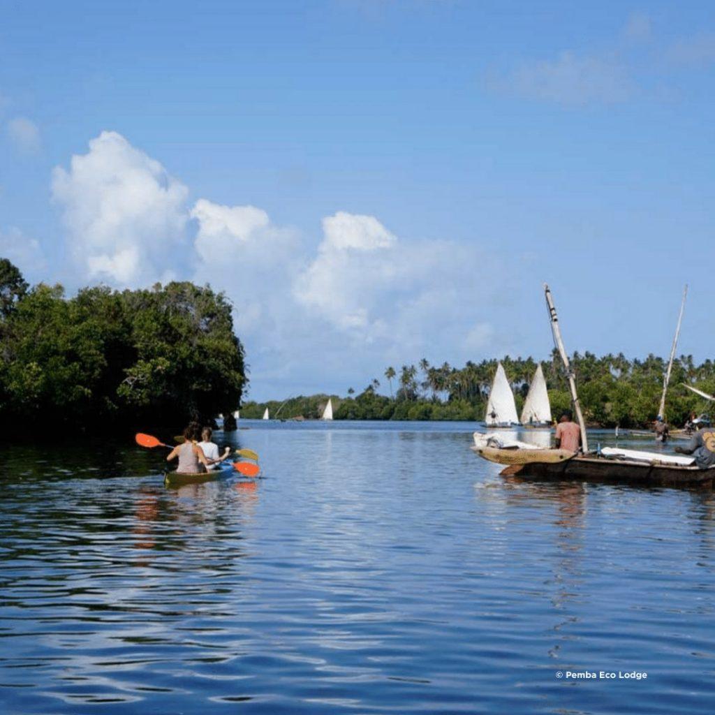 Kajaktour durch Mangroven