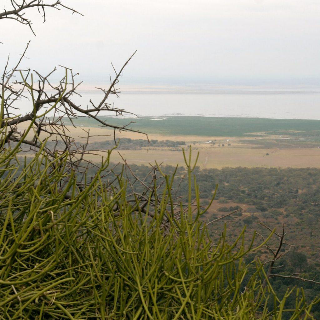 Viewpoint Manyara Tansania