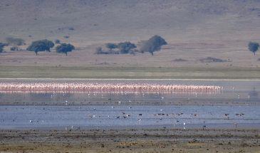 Ngorongoro Kratersee
