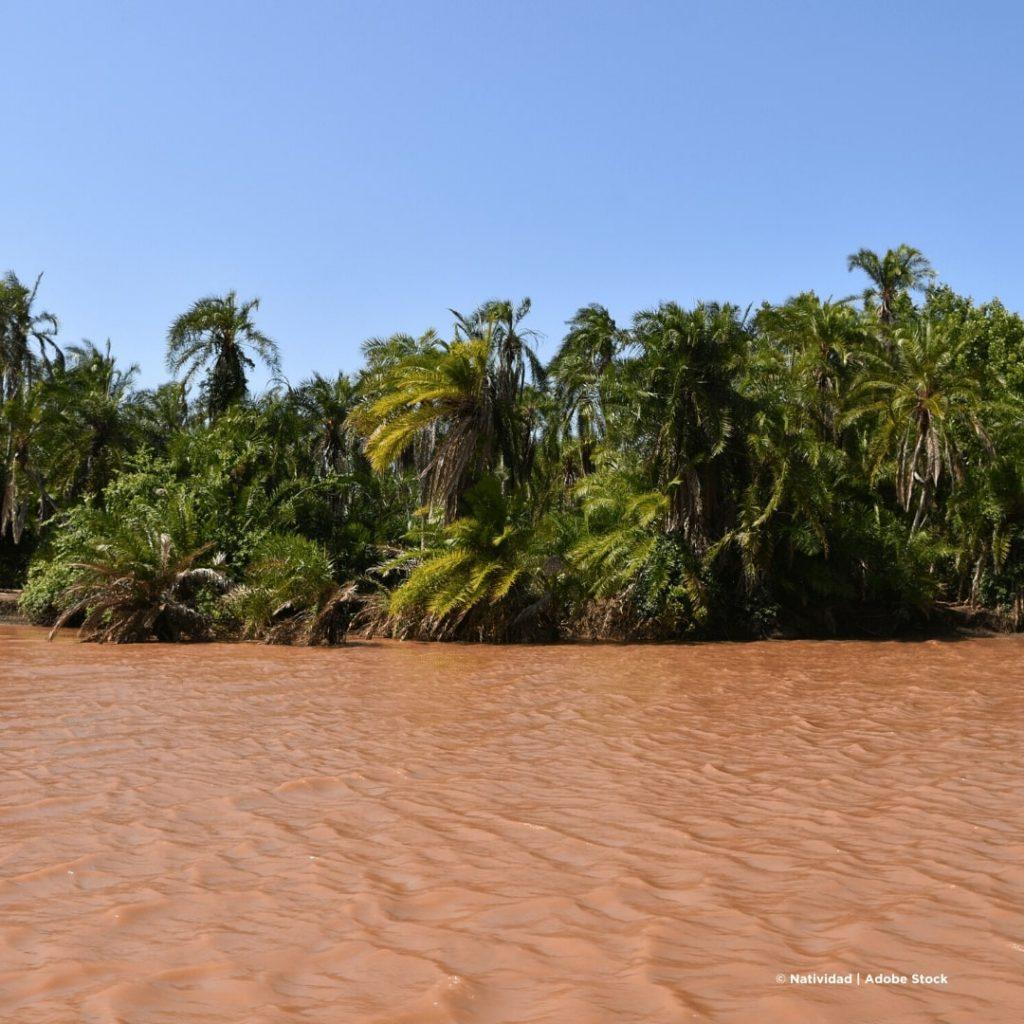 Saadani Wami Fluss