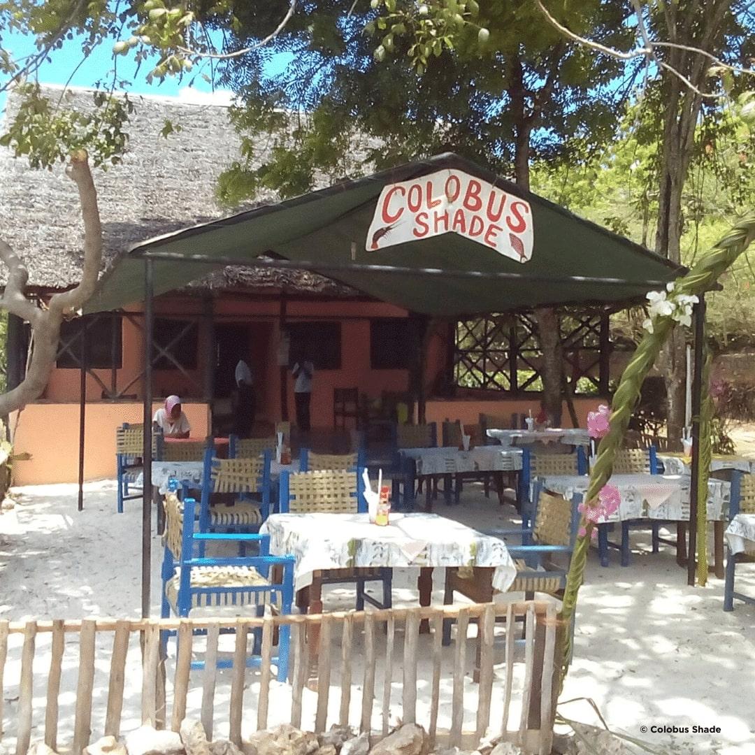 Diani Beach Colobus Shade