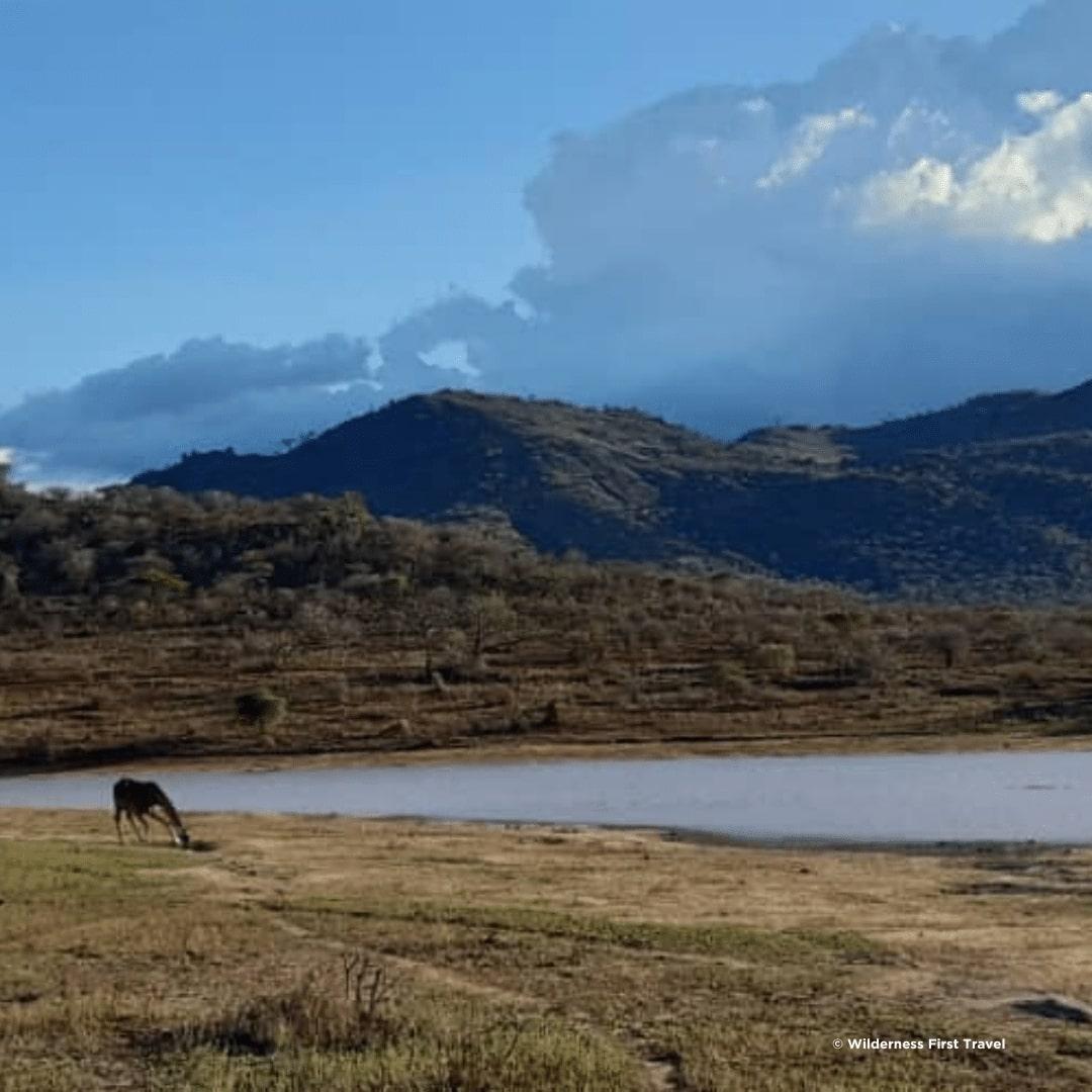 Mkomazi Nationalpark