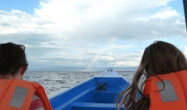 Bootssafari auf dem Naivasha-See