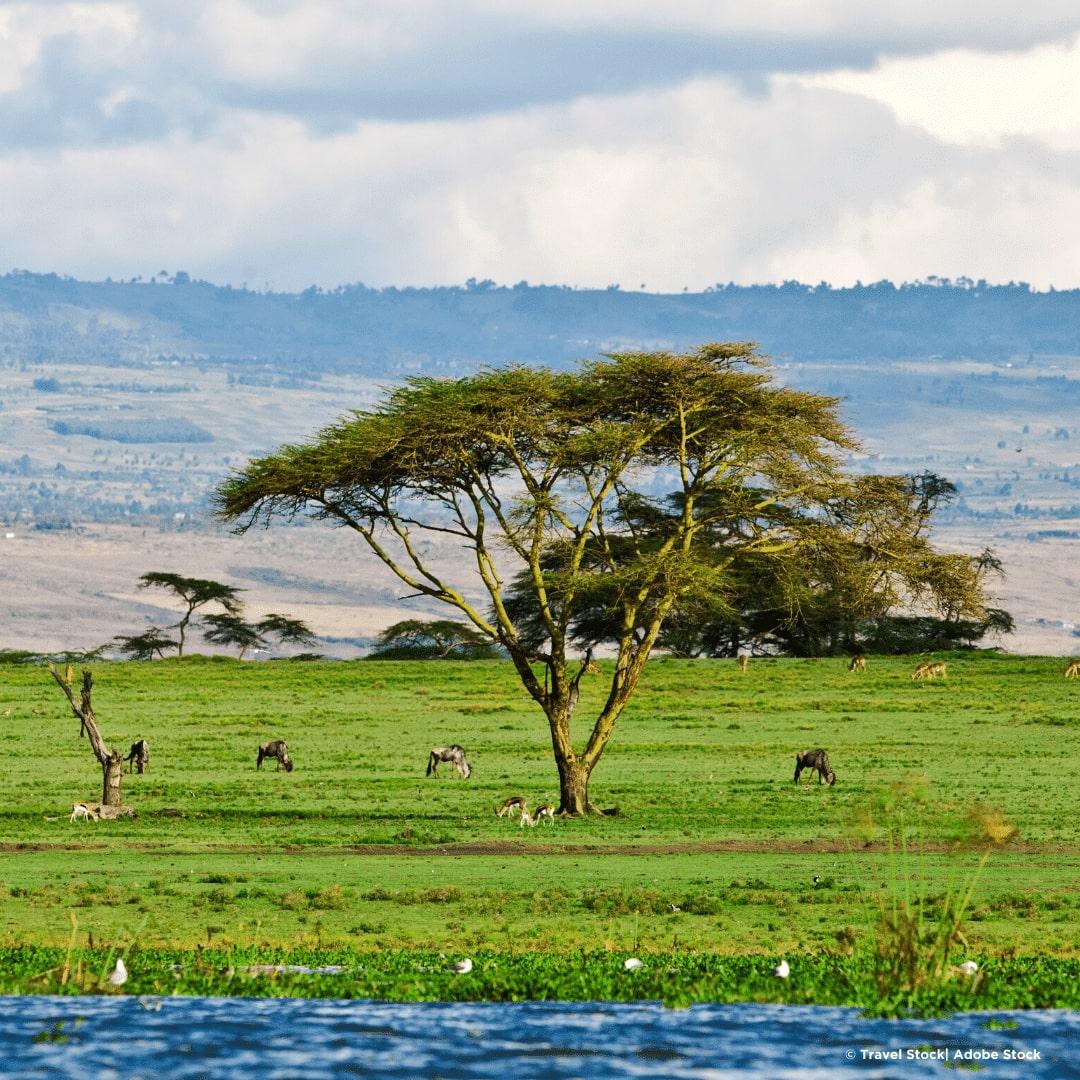 Naivasha Crescent Island