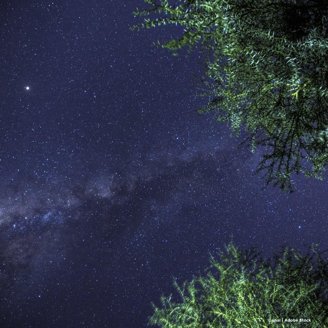 Naivasha Milchstraße