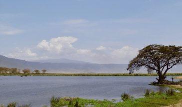 ngorongoro-krater_1-2
