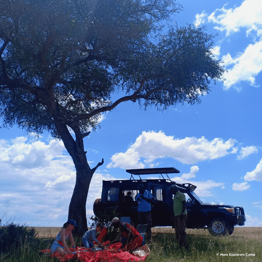 Masai Mara Picknick Lunch