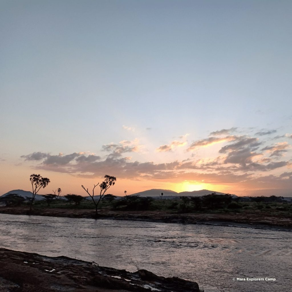 Samburu National Reserve Ewaso Nyiro