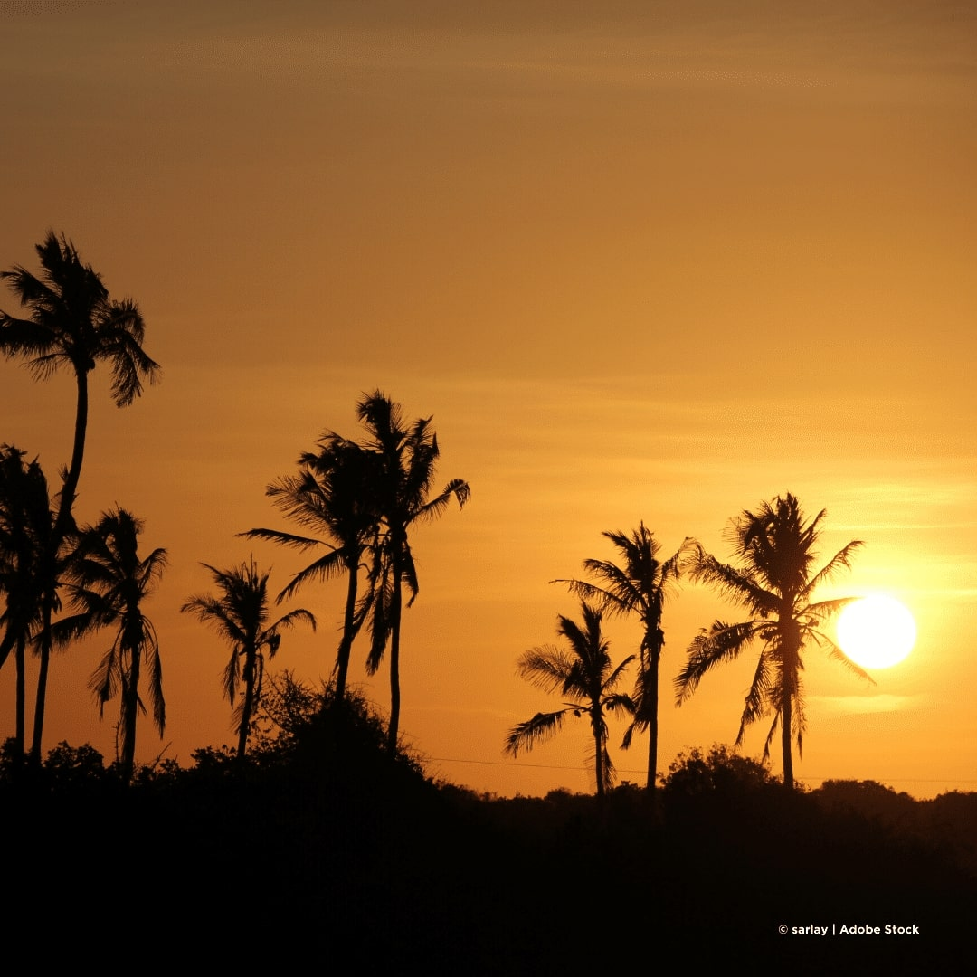 Sansibar Jambiani Sonnenuntergang