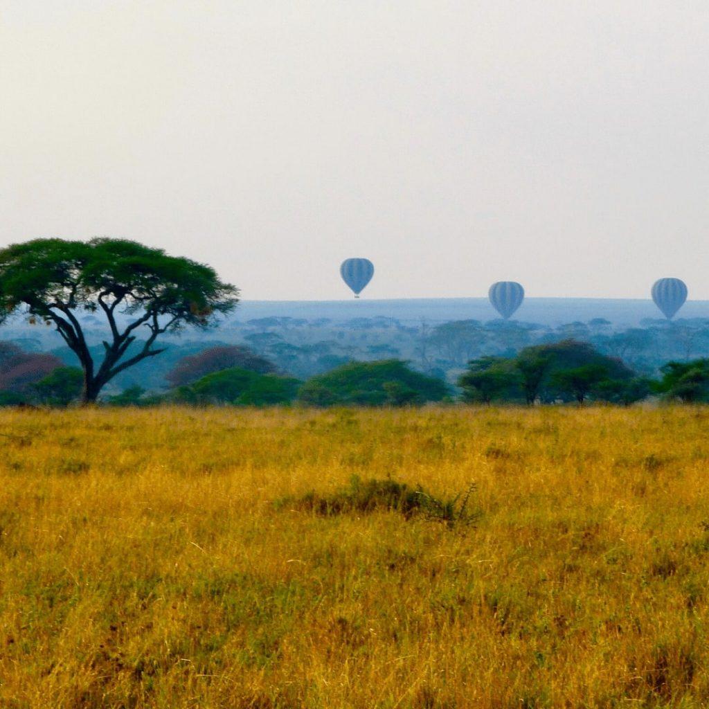 Serengeti Ballonsafari