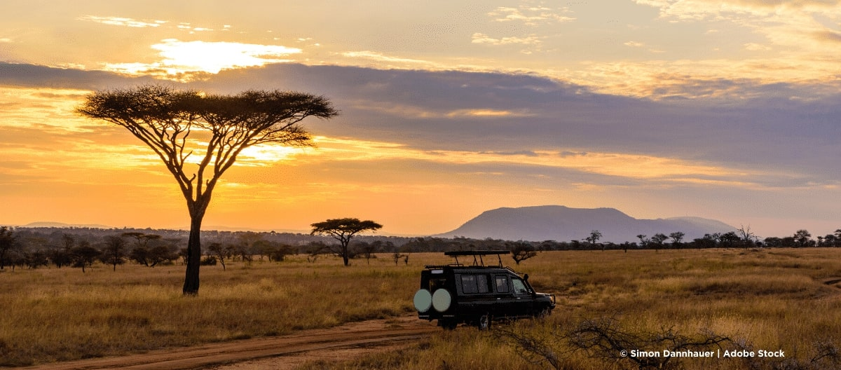 Tansania Safari mit Serengeti