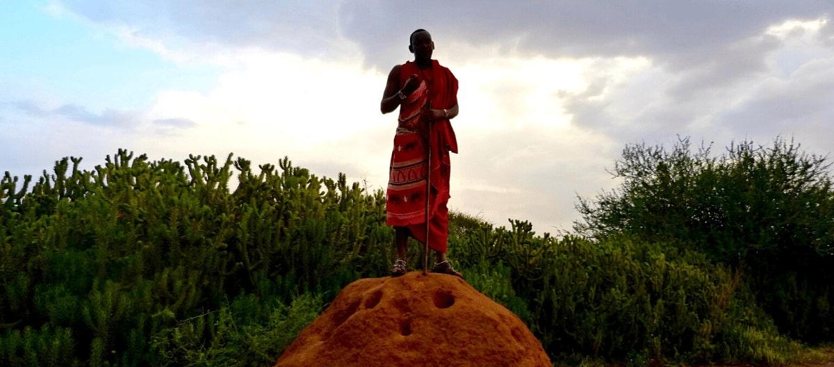 Tansania Safari mit Masai Dorf