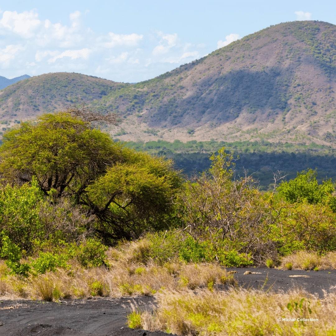Tsavo West Lavawege